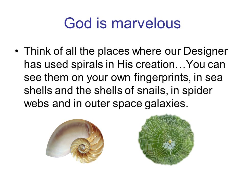 God is marvelous Think of all the places where our Designer has used spirals in His creation…You can see them on your own fingerprints, in sea shells