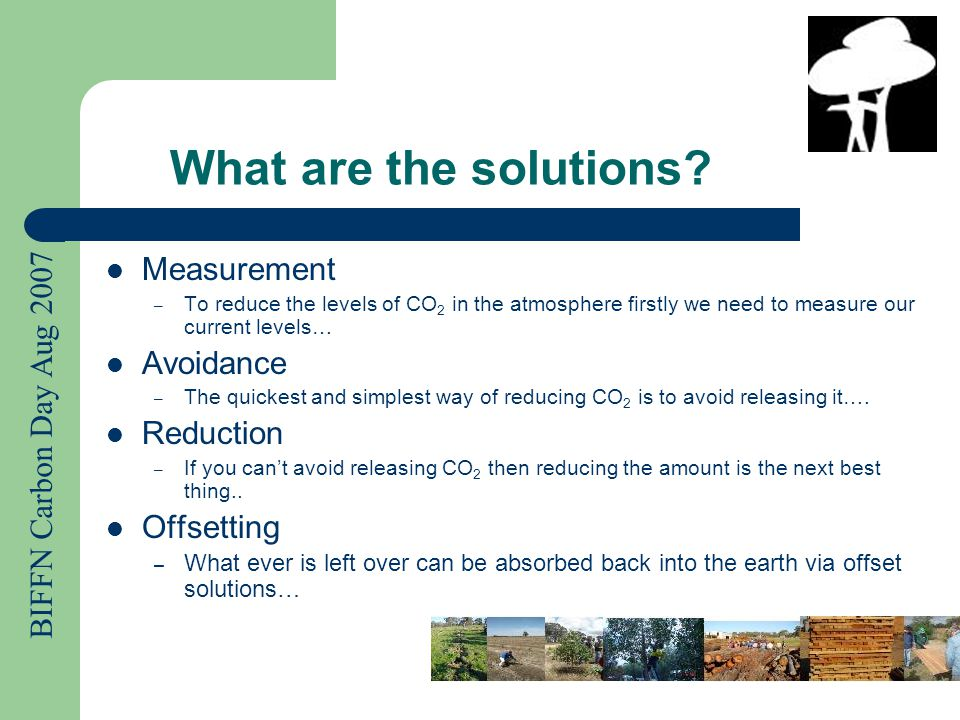 BIFFN Carbon Day Aug 2007 Measuring CO 2 levels… (Link to web calculators…Paul do you have any preferred sites to goto???) The Cooperative Research Centre for Greenhouse Activity have a Tree Carbon Calculator www.????