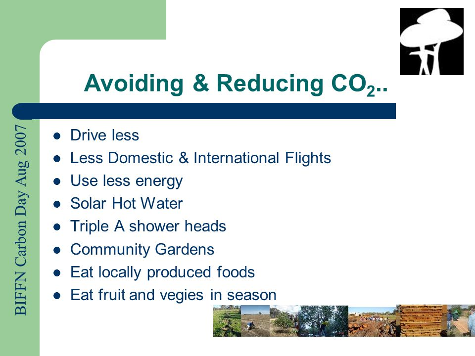 BIFFN Carbon Day Aug 2007 Avoiding & Reducing CO 2..