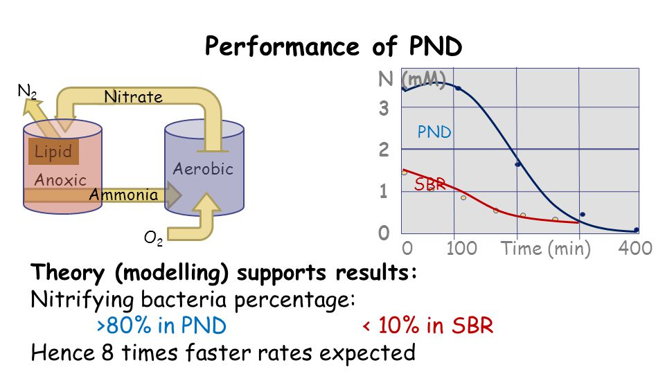 Performance of PND Theory (modelling) supports results: Nitrifying bacteria percentage: >80% in PND< 10% in SBR Hence 8 times faster rates expected Anoxic Aerobic Lipid O2O2 N2N2 Nitrate Ammonia 0 100 Time (min) 400 32103210 SBR PND N (mM)