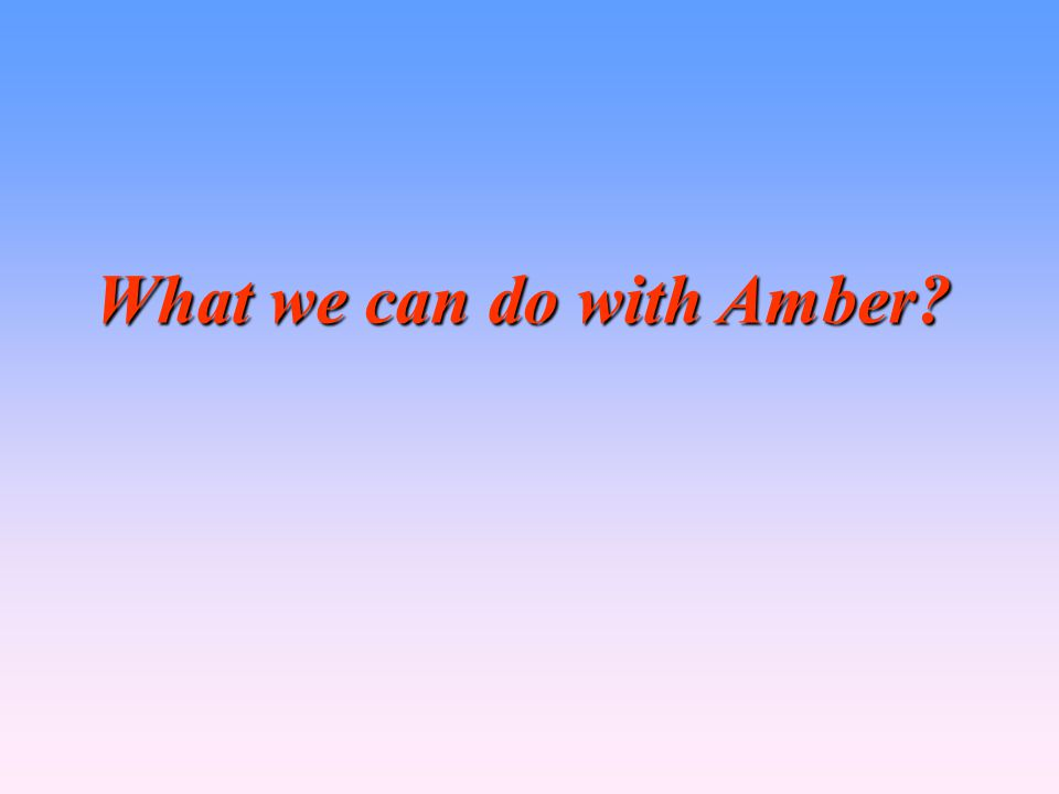 What we can do with Amber?
