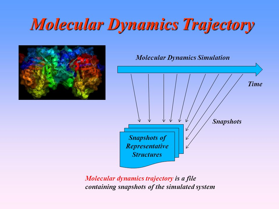 Molecular Dynamics Trajectory Time Molecular Dynamics Simulation Snapshots of Representative Structures Molecular dynamics trajectory is a file containing snapshots of the simulated system Snapshots