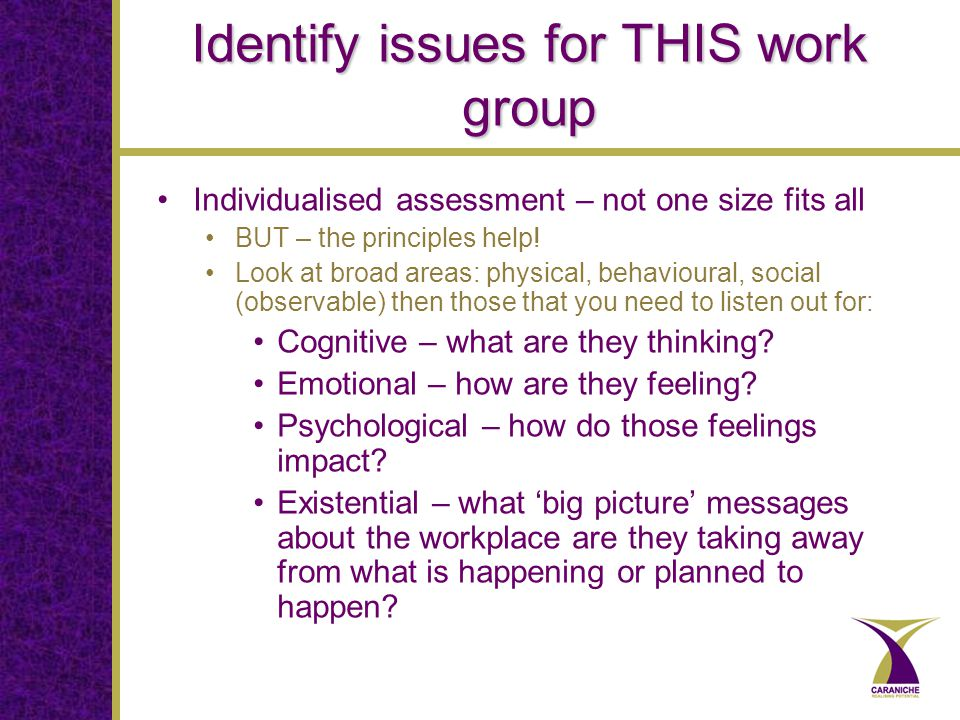 Identify issues for THIS work group Individualised assessment – not one size fits all BUT – the principles help.