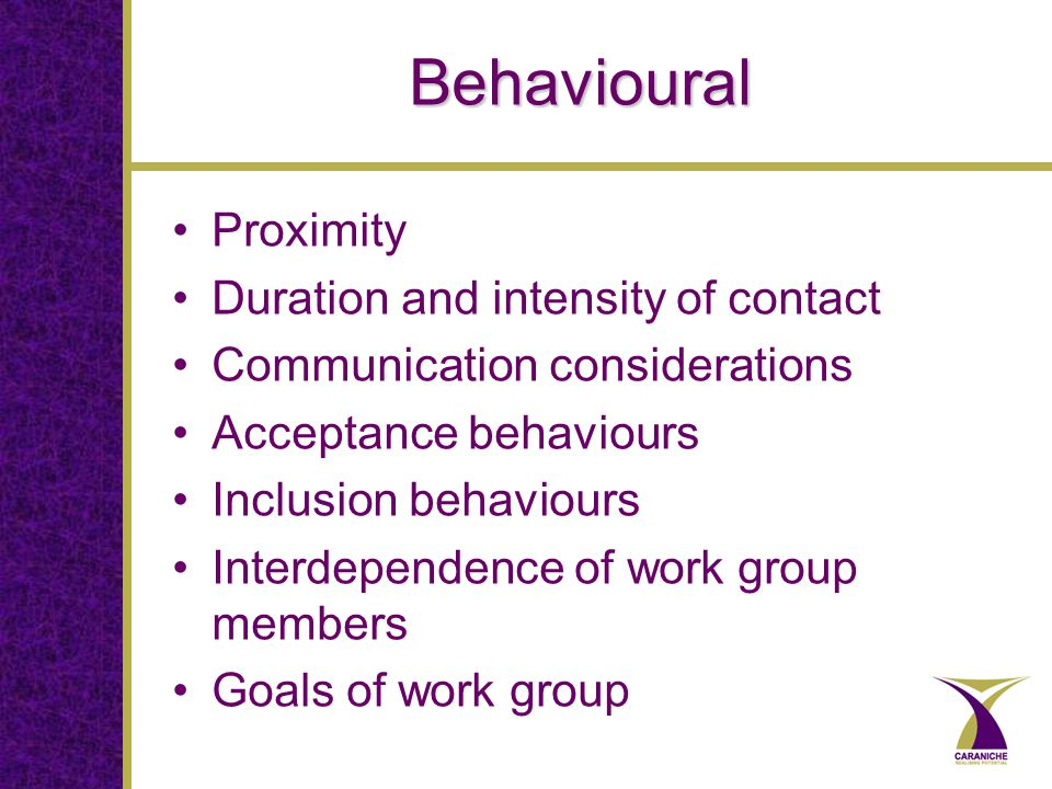 Behavioural Proximity Duration and intensity of contact Communication considerations Acceptance behaviours Inclusion behaviours Interdependence of work group members Goals of work group