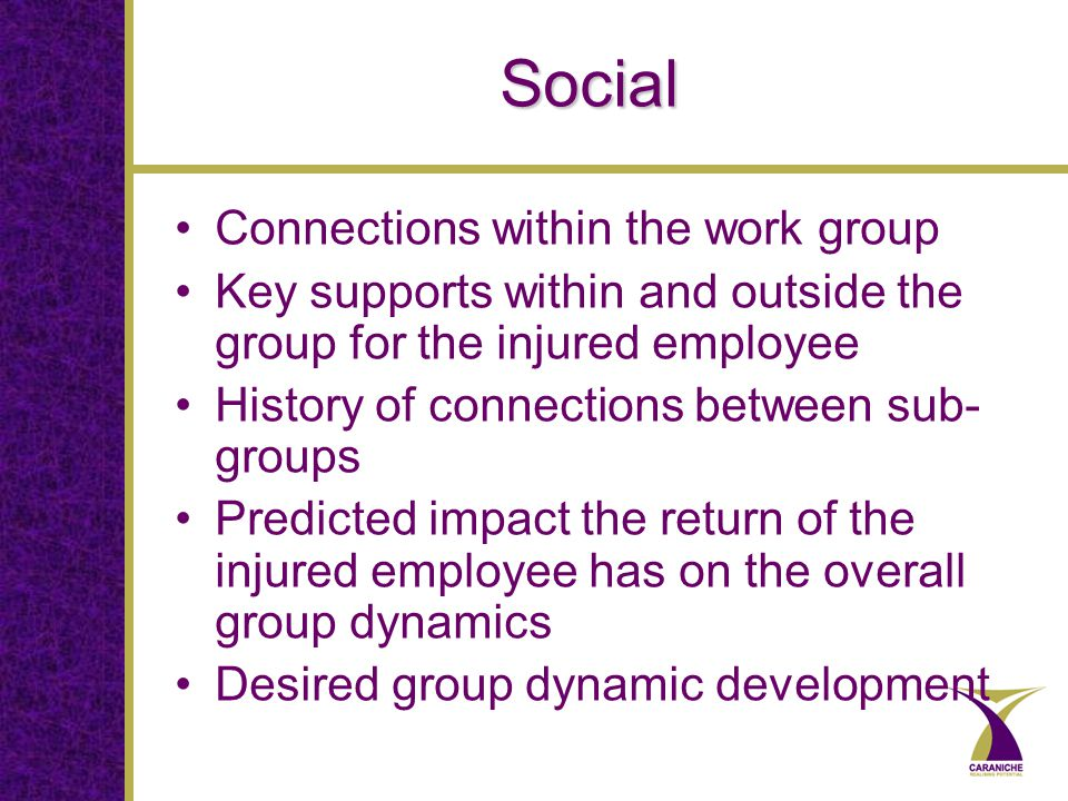 Social Connections within the work group Key supports within and outside the group for the injured employee History of connections between sub- groups Predicted impact the return of the injured employee has on the overall group dynamics Desired group dynamic development
