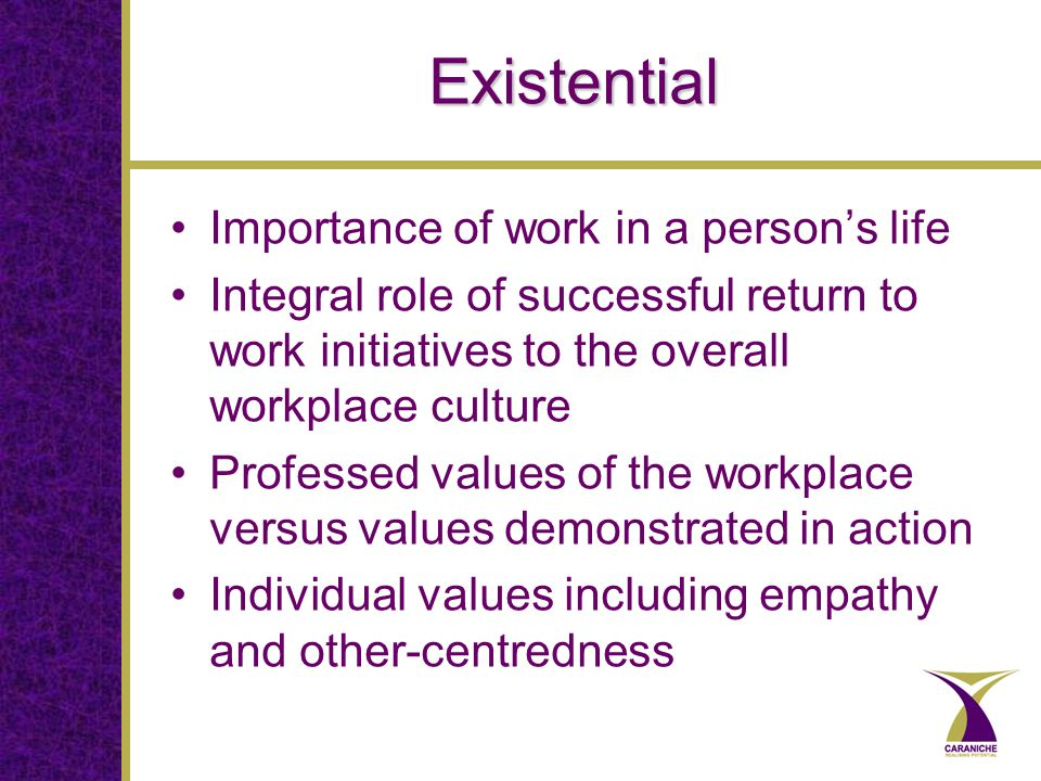 Existential Importance of work in a person's life Integral role of successful return to work initiatives to the overall workplace culture Professed values of the workplace versus values demonstrated in action Individual values including empathy and other-centredness