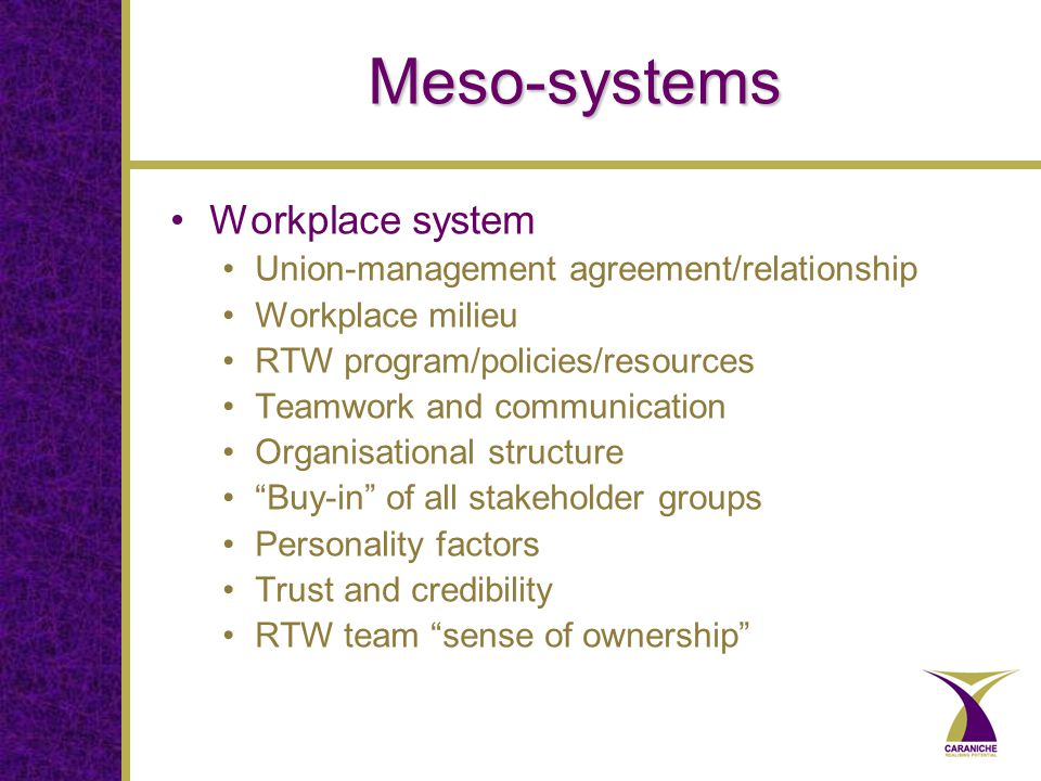 Meso-systems Workplace system Union-management agreement/relationship Workplace milieu RTW program/policies/resources Teamwork and communication Organisational structure Buy-in of all stakeholder groups Personality factors Trust and credibility RTW team sense of ownership