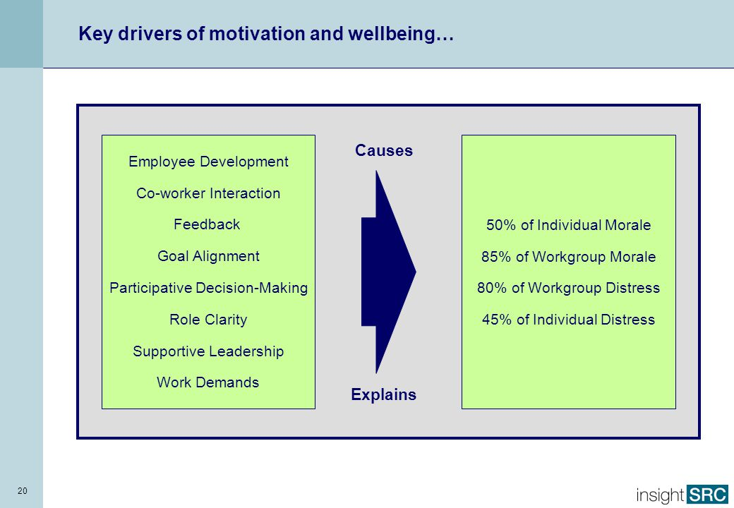 20 Employee Development Co-worker Interaction Feedback Goal Alignment Participative Decision-Making Role Clarity Supportive Leadership Work Demands 50