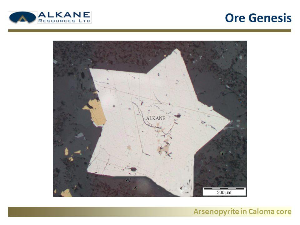 Arsenopyrite in Caloma core Ore Genesis