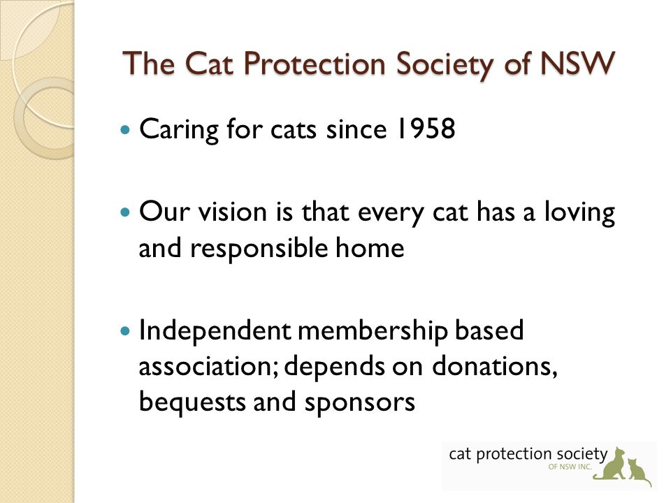 The Cat Protection Society of NSW Caring for cats since 1958 Our vision is that every cat has a loving and responsible home Independent membership based association; depends on donations, bequests and sponsors