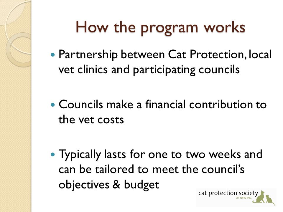 How the program works Partnership between Cat Protection, local vet clinics and participating councils Councils make a financial contribution to the vet costs Typically lasts for one to two weeks and can be tailored to meet the council's objectives & budget