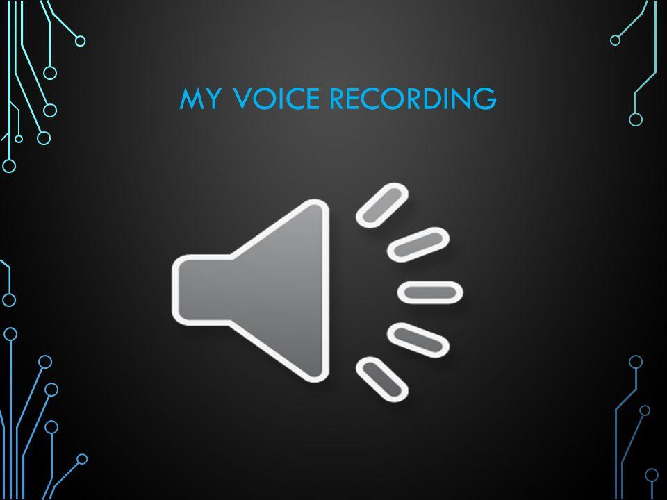 MY VOICE RECORDING
