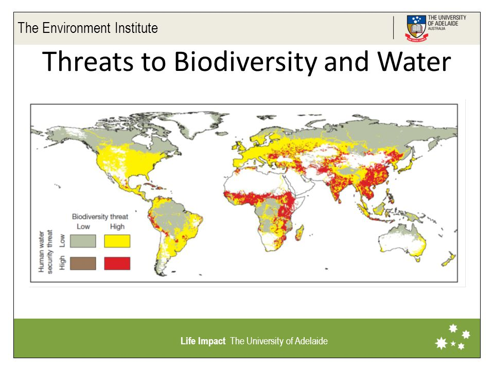 The Environment Institute Life Impact The University of Adelaide Threats to Biodiversity and Water