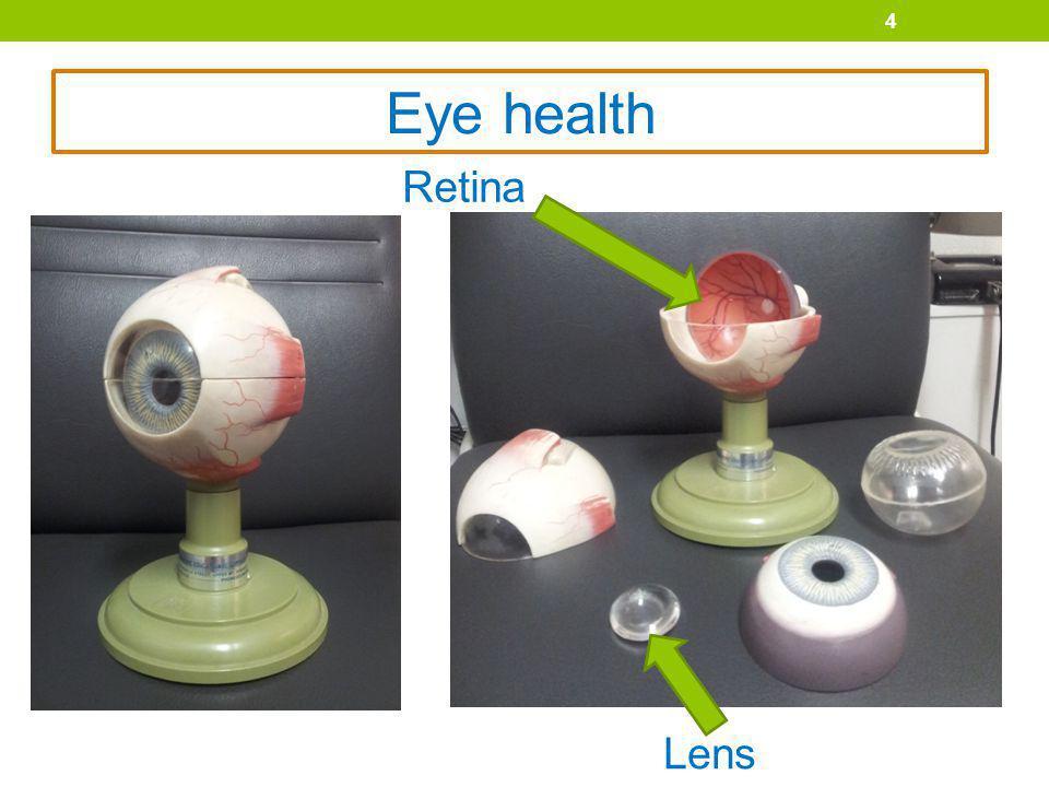 4 Eye health Retina Lens