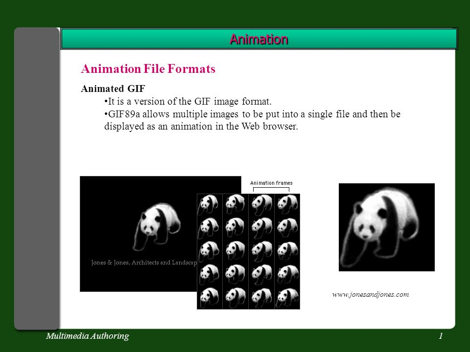 Multimedia Authoring1 Animation Animation File Formats Animated GIF It is a version of the GIF image format.