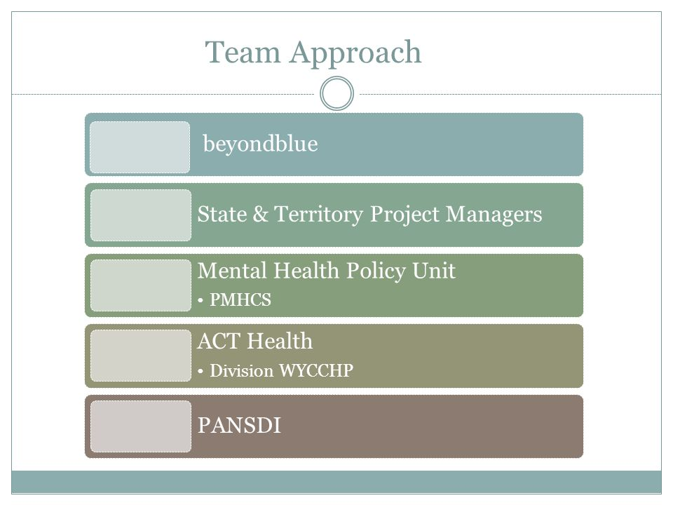 Team Approach beyondblue State & Territory Project Managers Mental Health Policy Unit PMHCS ACT Health Division WYCCHP PANSDI