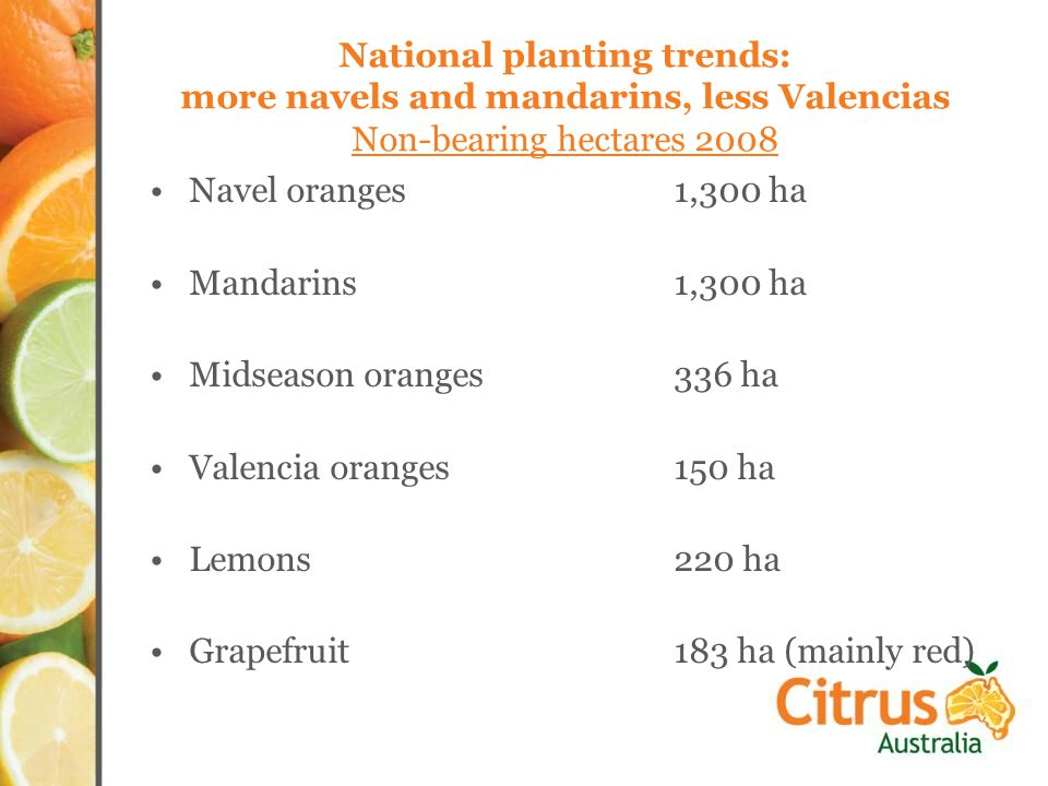 National planting trends: more navels and mandarins, less Valencias Non-bearing hectares 2008 Navel oranges1,300 ha Mandarins1,300 ha Midseason oranges336 ha Valencia oranges150 ha Lemons220 ha Grapefruit183 ha (mainly red)