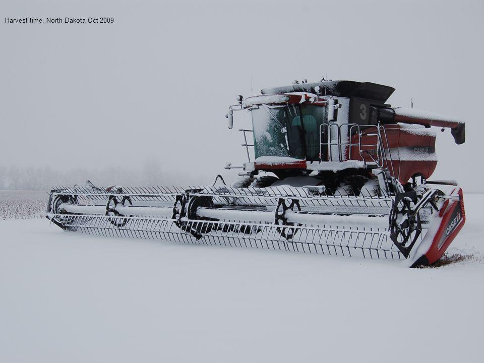 Harvest time, North Dakota Oct 2009