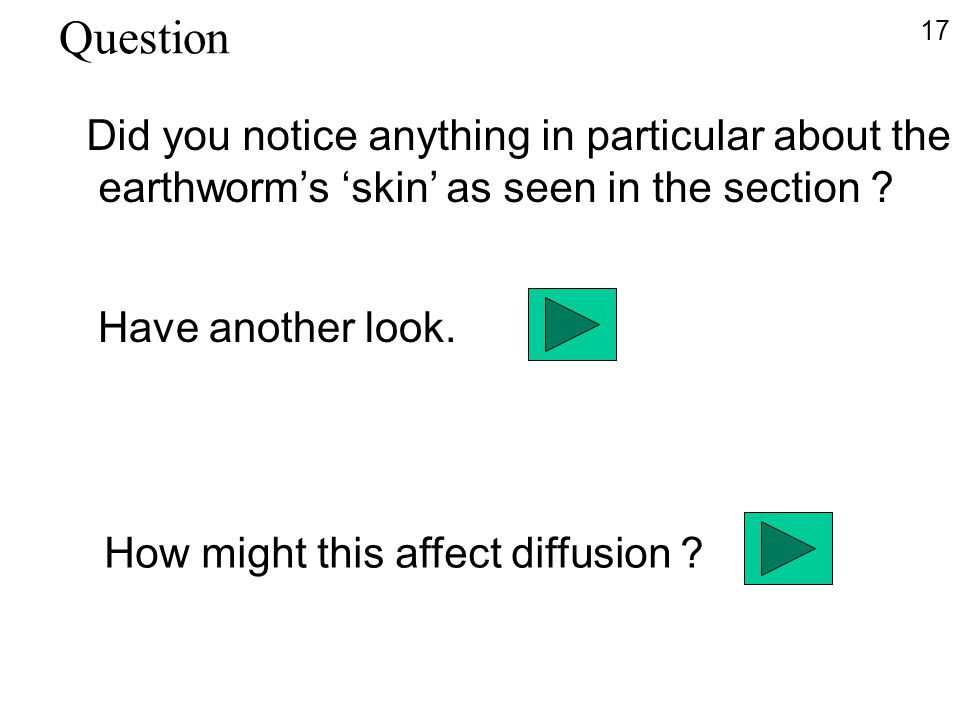 Did you notice anything in particular about the earthworm's 'skin' as seen in the section ? Have another look. How might this affect diffusion ? 17 Qu