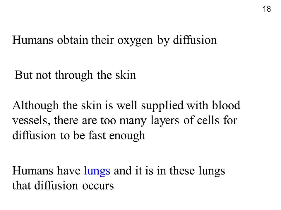 Humans obtain their oxygen by diffusion But not through the skin Although the skin is well supplied with blood vessels, there are too many layers of c