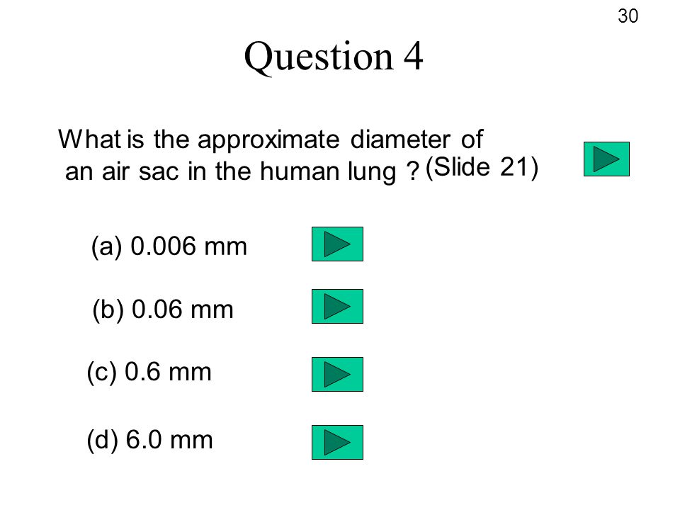 Question 4 What is the approximate diameter of an air sac in the human lung ? (a) 0.006 mm (b) 0.06 mm (c) 0.6 mm (d) 6.0 mm 30 (Slide 21)