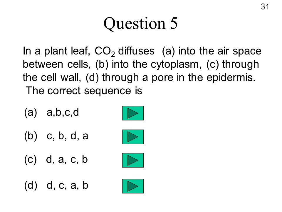 Question 5 In a plant leaf, CO 2 diffuses (a) into the air space between cells, (b) into the cytoplasm, (c) through the cell wall, (d) through a pore