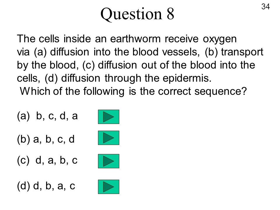Question 8 The cells inside an earthworm receive oxygen via (a) diffusion into the blood vessels, (b) transport by the blood, (c) diffusion out of the