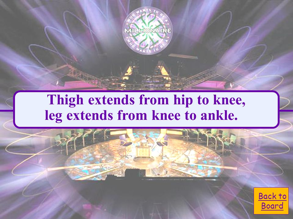 B. hip to the knee D. knee to the ankle Anatomically speaking, the leg extends from the: