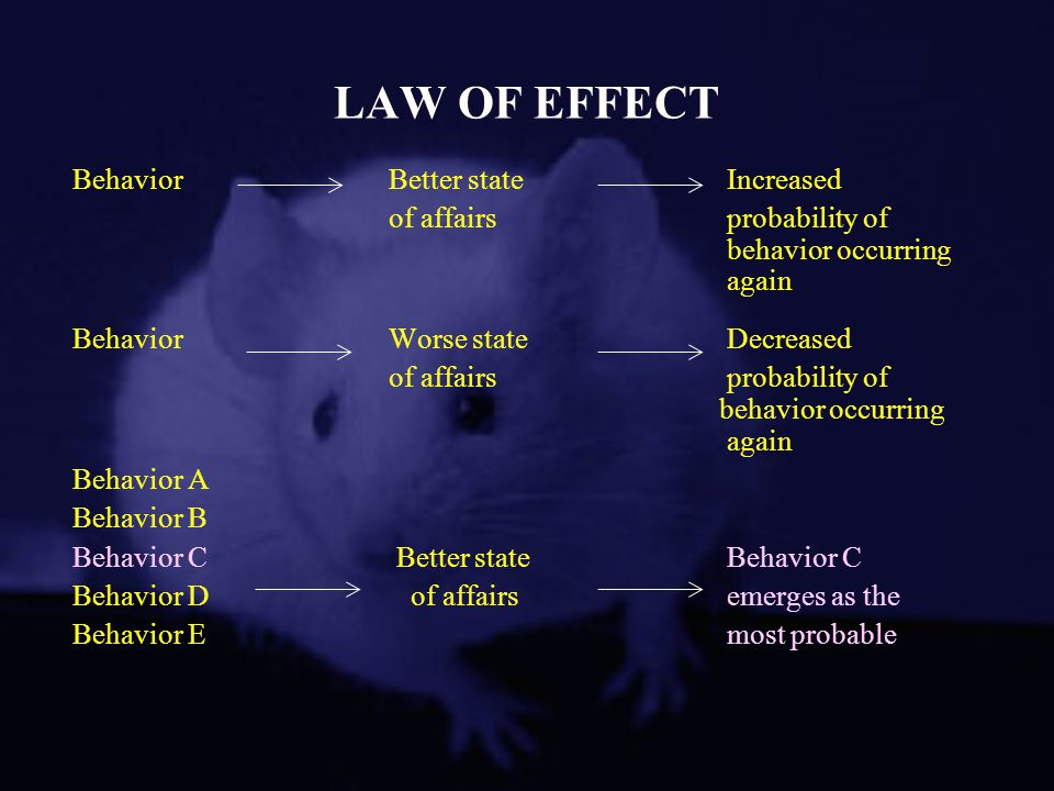 LAW OF EFFECT BehaviorBetter state Increased of affairs probability of behavior occurring again BehaviorWorse state Decreased of affairs probability o