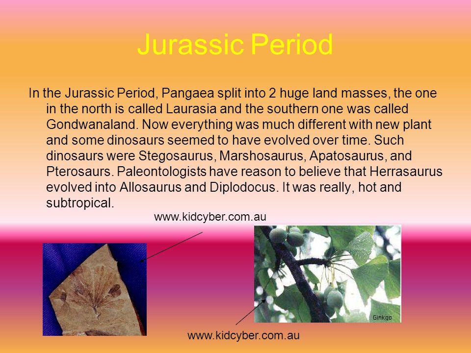 Jurassic meanings Allosaurus-Strange lizard Stegosaurus-Roof lizard Camptosaurus-Bent lizard Marshosaurus-Marsh's lizard Diplodicus-Double beam Archaeopteryx-Ancient wing