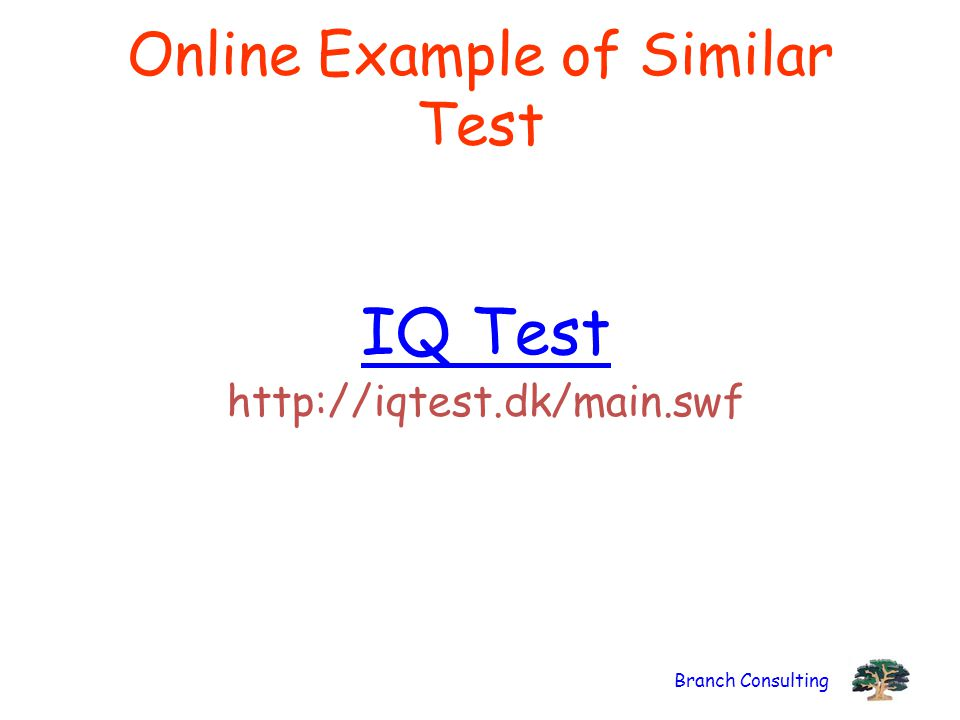 Branch Consulting Online Example of Similar Test IQ Test http://iqtest.dk/main.swf