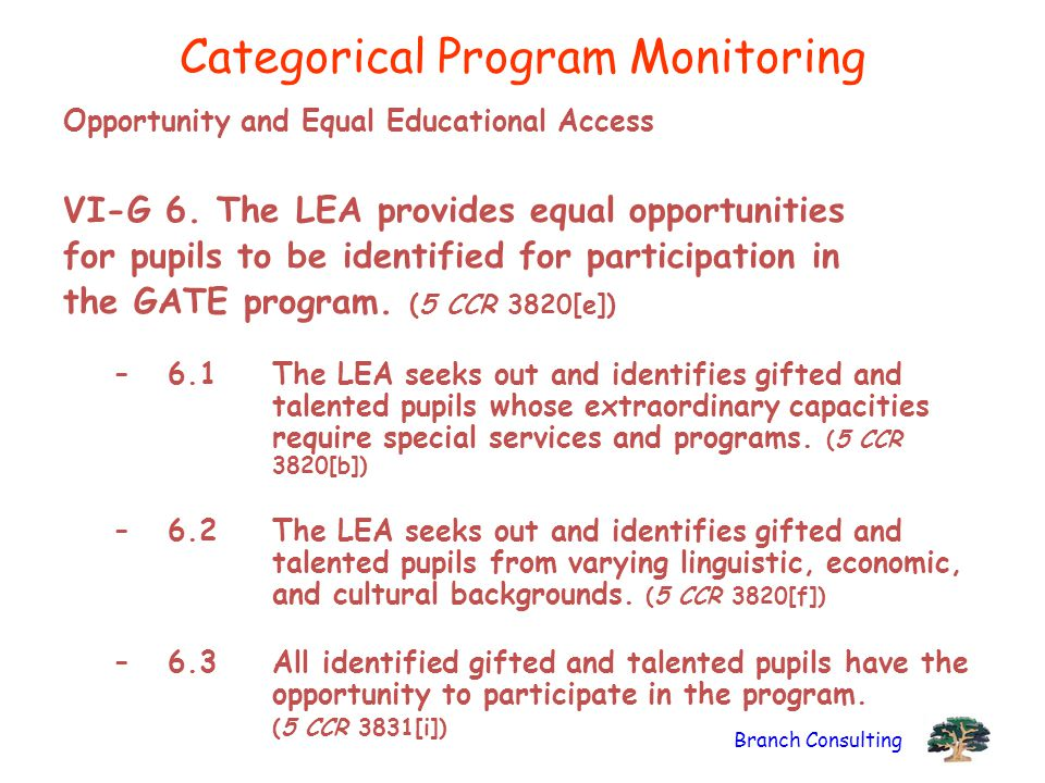 Branch Consulting Categorical Program Monitoring Opportunity and Equal Educational Access VI-G 6. The LEA provides equal opportunities for pupils to b