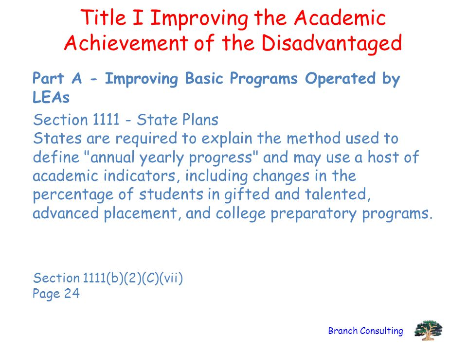 Branch Consulting Title I Improving the Academic Achievement of the Disadvantaged Part A - Improving Basic Programs Operated by LEAs Section 1111 - St