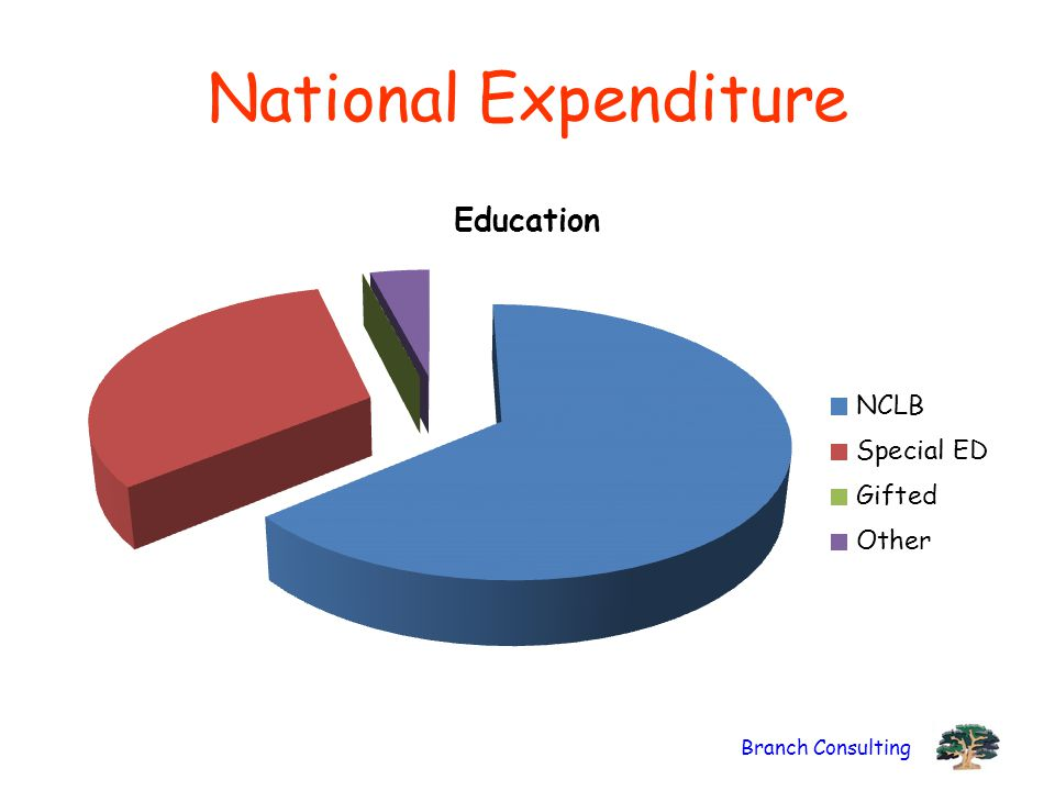 Branch Consulting National Expenditure