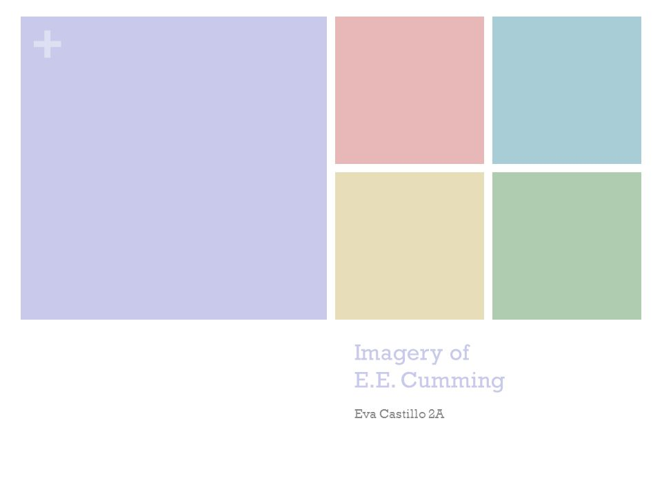 + Imagery of E.E. Cumming Eva Castillo 2A