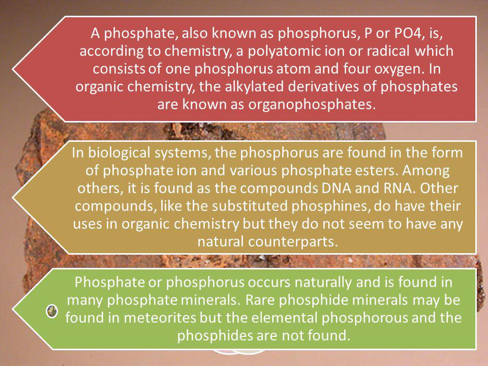 A phosphate, also known as phosphorus, P or PO4, is, according to chemistry, a polyatomic ion or radical which consists of one phosphorus atom and four oxygen.