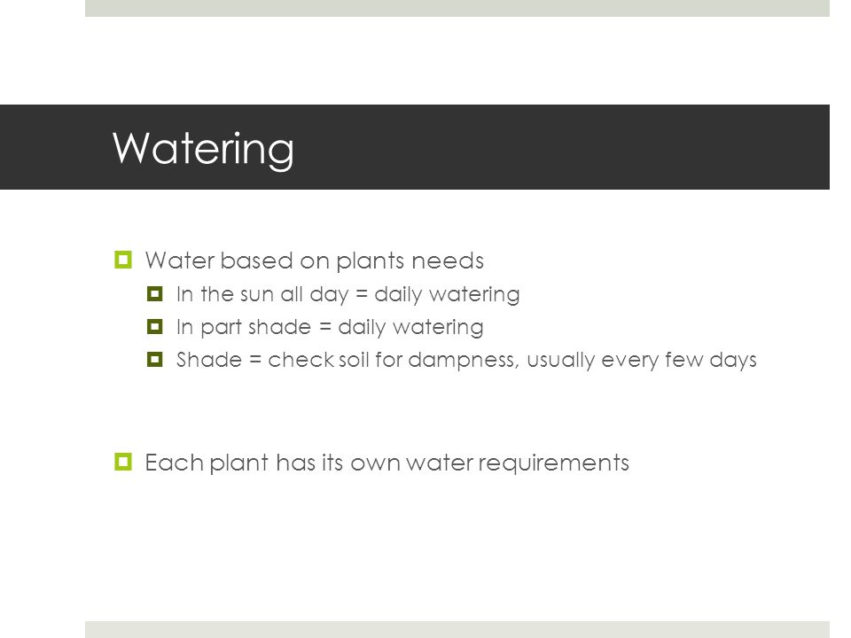 Watering  Water based on plants needs  In the sun all day = daily watering  In part shade = daily watering  Shade = check soil for dampness, usually every few days  Each plant has its own water requirements