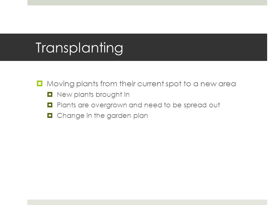 Transplanting  Moving plants from their current spot to a new area  New plants brought in  Plants are overgrown and need to be spread out  Change in the garden plan