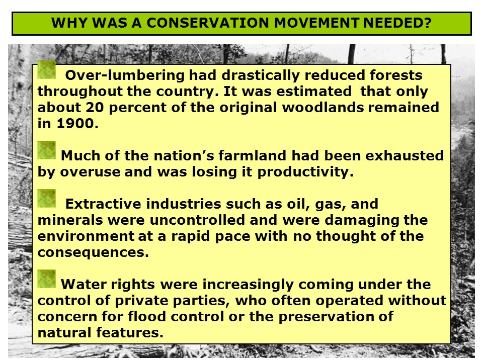 WHY WAS A CONSERVATION MOVEMENT NEEDED.