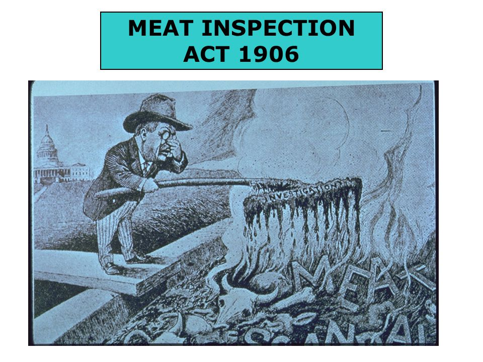 Required USDA to inspect all cattle, sheep, swine, goats, and horses when slaughtered and processed into products for human consumption.
