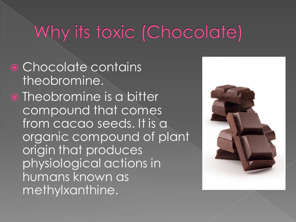  Chocolate contains theobromine.  Theobromine is a bitter compound that comes from cacao seeds.