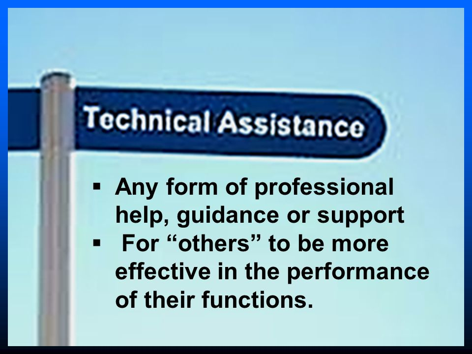  Any form of professional help, guidance or support  For others to be more effective in the performance of their functions.