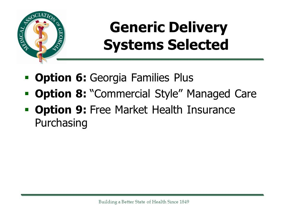 Generic Delivery Systems Selected  Option 6: Georgia Families Plus  Option 8: Commercial Style Managed Care  Option 9: Free Market Health Insurance Purchasing Building a Better State of Health Since 1849