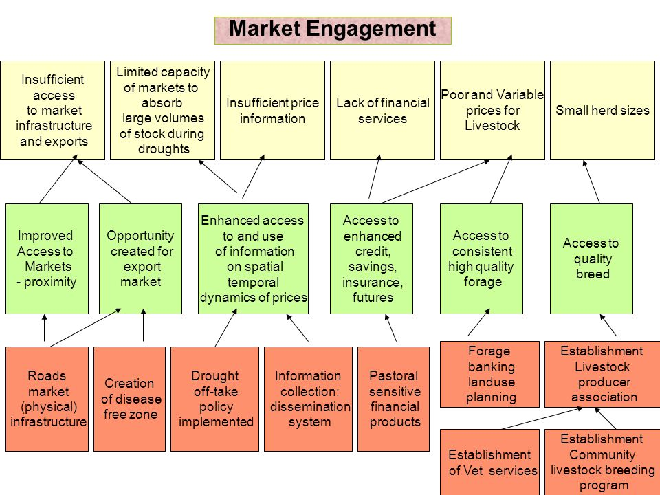 Meso: Access to markets (proximity), information on prices, access to financial services, higher producer prices, and larger (sufficient) herd sizes would enhance pastoral engagement in markets.