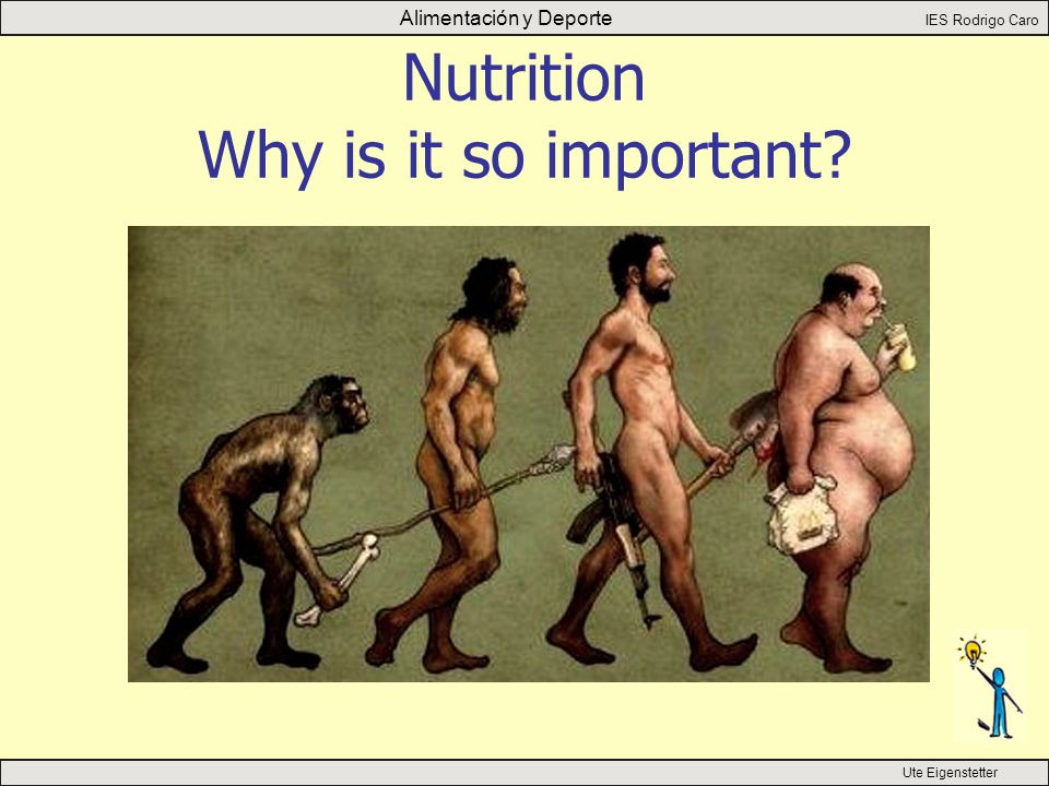 Alimentación y Deporte IES Rodrigo Caro Ute Eigenstetter Nutrition Why is it so important