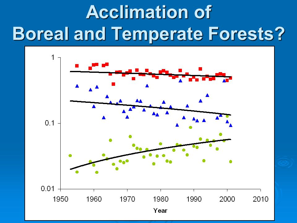 Acclimation of Boreal and Temperate Forests?