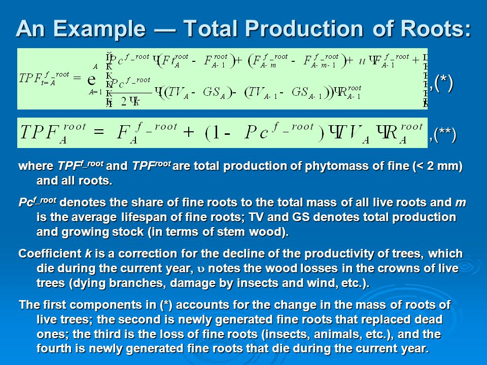 An Example ― Total Production of Roots: where TPF f_root and TPF root are total production of phytomass of fine (< 2 mm) and all roots.