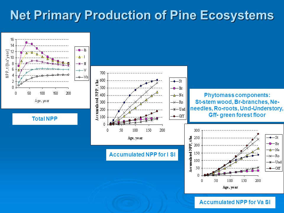 Net Primary Production of Pine Ecosystems Total NPP Accumulated NPP for I SI Accumulated NPP for Va SI Phytomass components: St-stem wood, Br-branches, Ne- needles, Ro-roots, Und-Understory, Gff- green forest floor