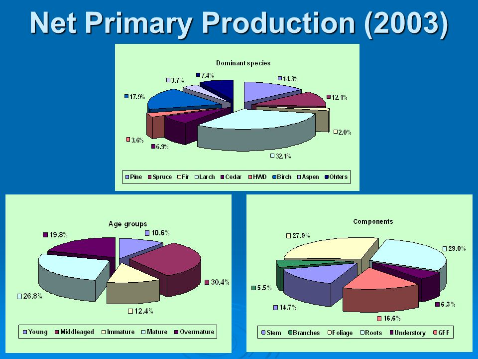 Net Primary Production (2003)