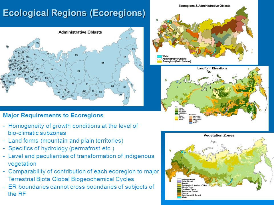 Ecological Regions (Ecoregions) Major Requirements to Ecoregions - Homogeneity of growth conditions at the level of bio-climatic subzones - Land forms (mountain and plain territories) - Specifics of hydrology (permafrost etc.) - Level and peculiarities of transformation of indigenous vegetation - Comparability of contribution of each ecoregion to major Terrestrial Biota Global Biogeochemical Cycles - ER boundaries cannot cross boundaries of subjects of the RF